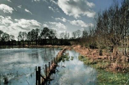 flood21