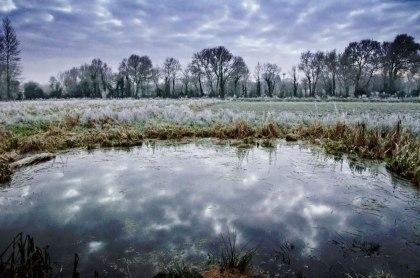 frost3web