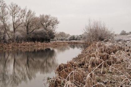 frost9web