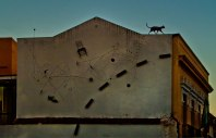 Cat On A hot Tin Roof. Almeria.
